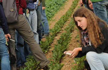 Students inspect crops on a farm