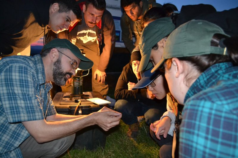 Professor Jim McNeil shows students a click beetle captured with a light trap at night